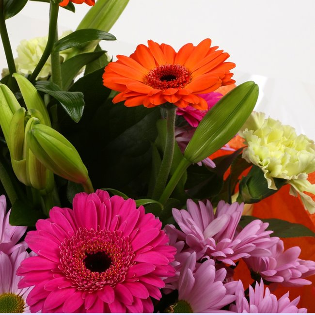 additional image for Birthday Balloon & Colour Burst Bouquet