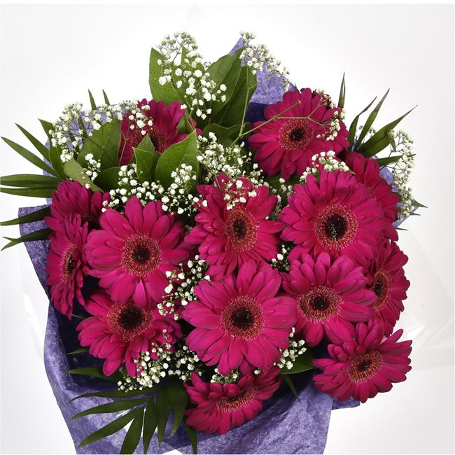 additional image for Cerise Glamour Gerberas