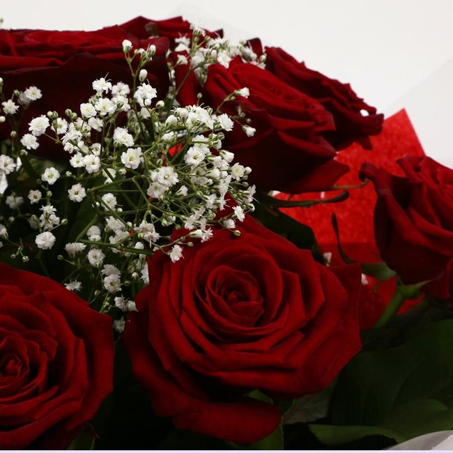 additional image for 12 Red Roses With Gypsophila