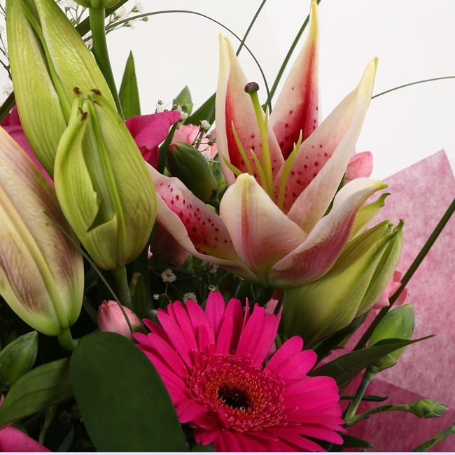 additional image for Pink Florence Bouquet