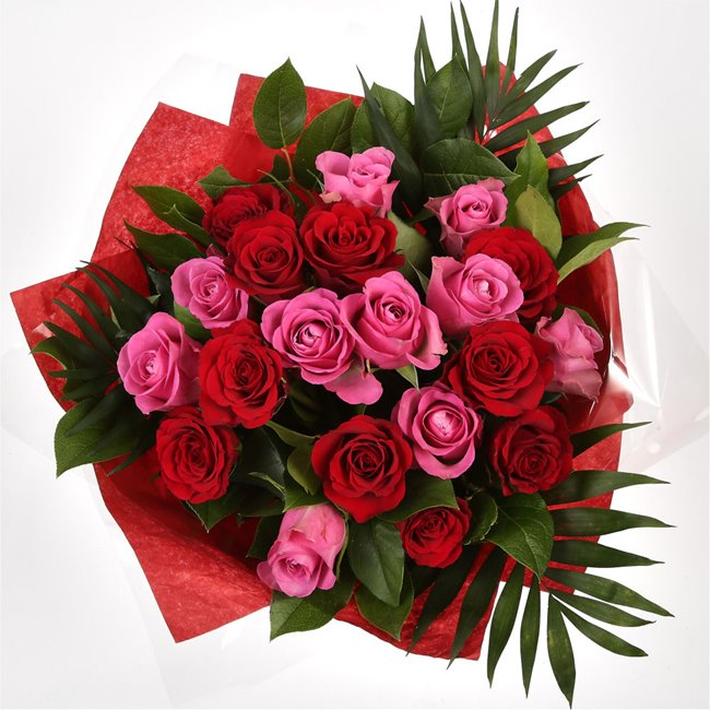 additional image for 12 Red Pink Blush Rose Bouquet