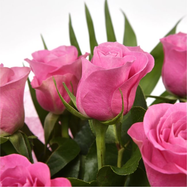 additional image for 12 Luxury Pink Roses Bouquet