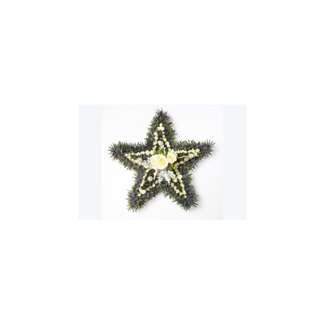 additional image for STAR SHAPED TRIBUTE