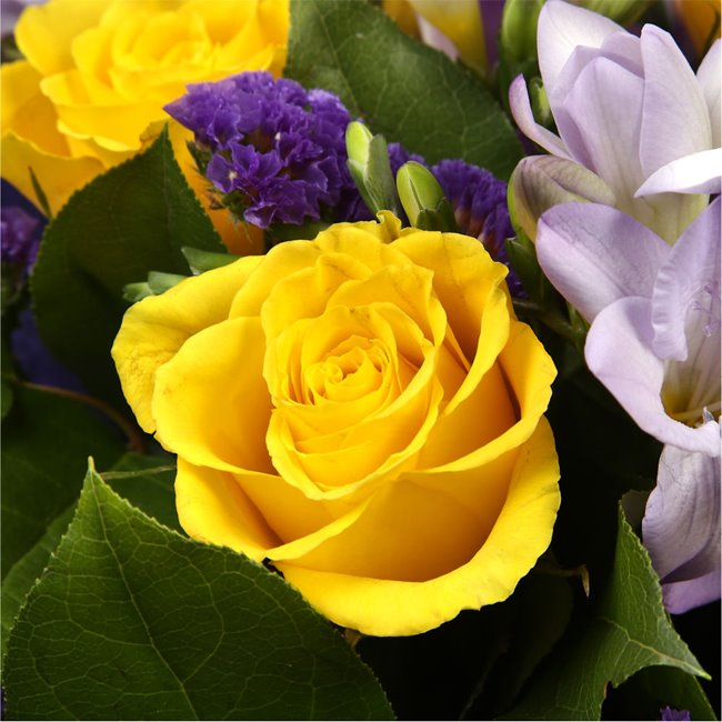 additional image for Pretty Scented Roses and Freesias Bouquet