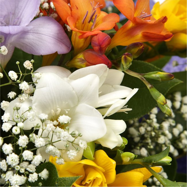 additional image for Scented Freesias Bouquet