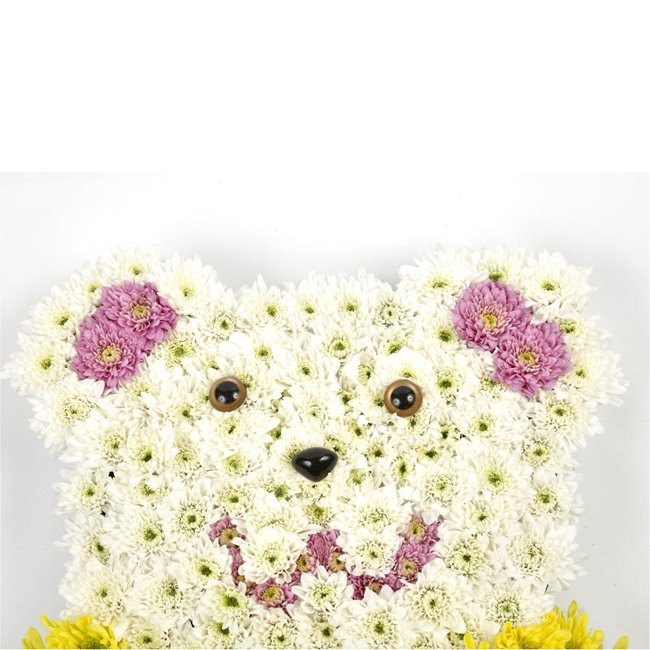 additional image for TEDDY BEAR TRIBUTE